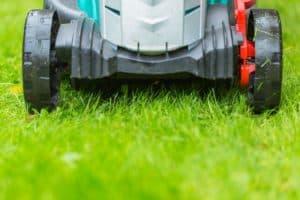 מכסחת דשא עוצמתית - כך החצר שלכם תראה מושלם